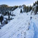 Der Weg schlängelt sich durch den winterlichen Schnee