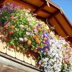 Hochgernhaus Balkon
